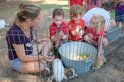 Don't Miss Our Fall Festival –