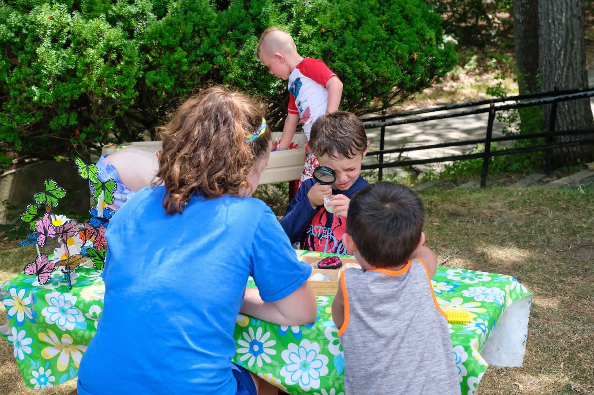 Family Fun Day at Nobles Day Camp